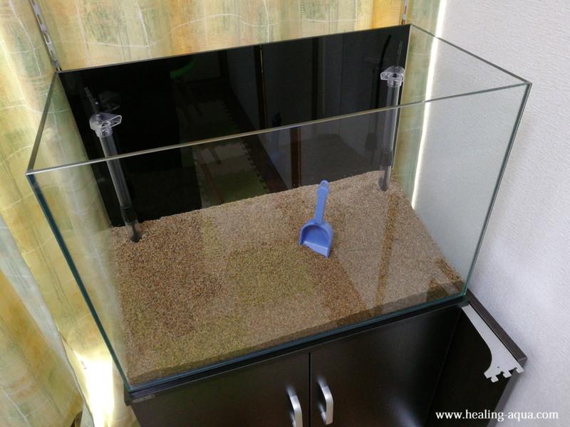 60cm水槽レイアウト