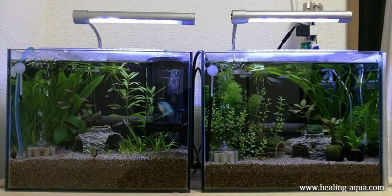 30cm水槽2台