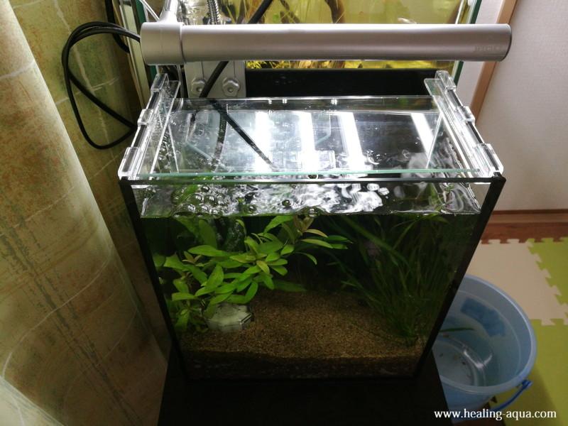 水槽照明テトラ LEDスマートライト LED-SL設置