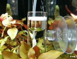 CO2拡散器の洗浄