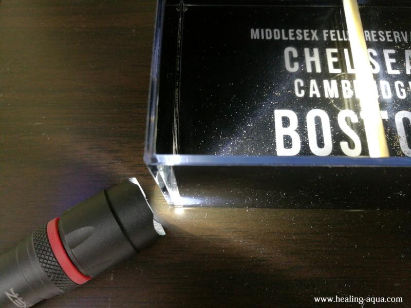 ブラインシュリンプを懐中電灯の光で寄せる