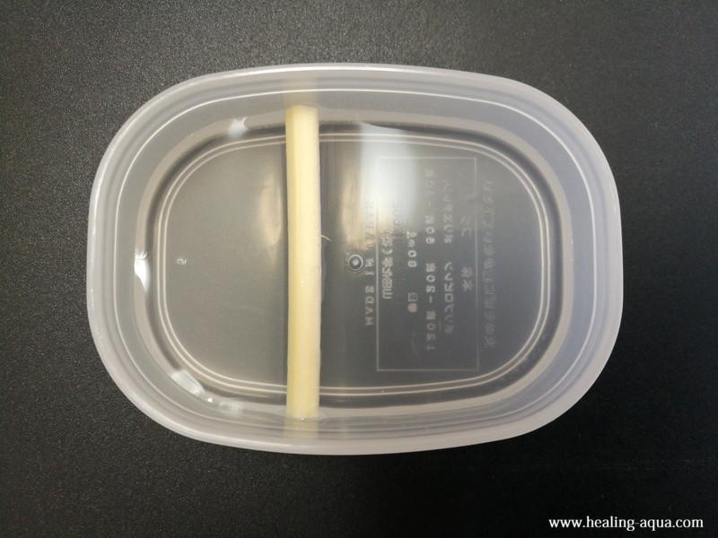 ブラインシュリンプを孵化する小さい容器に仕切りの割り箸