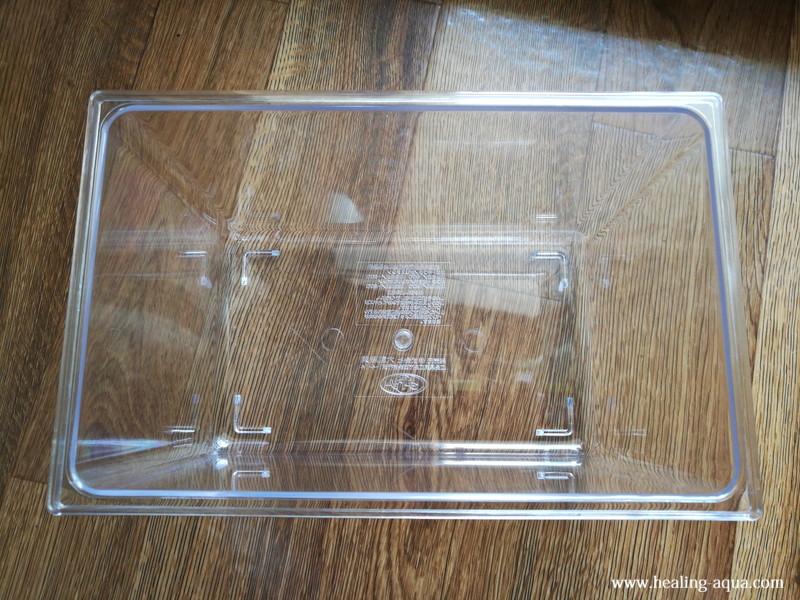 100円ショップのプラスチック虫カゴ