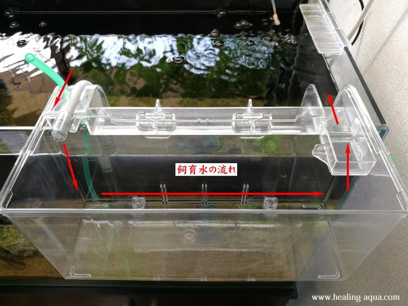 サテライトLの飼育水の流れ