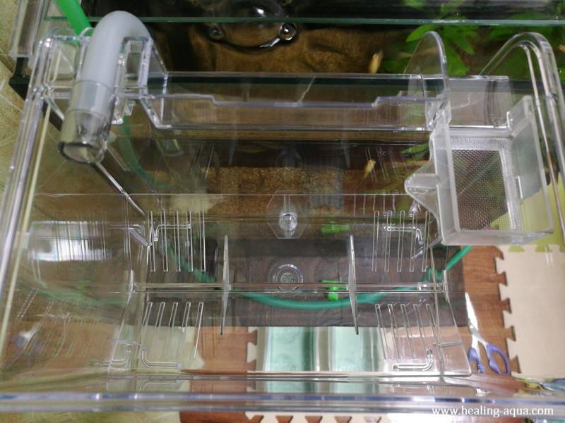 サテライト外掛式飼育ボックスを25cm水槽にセッティング