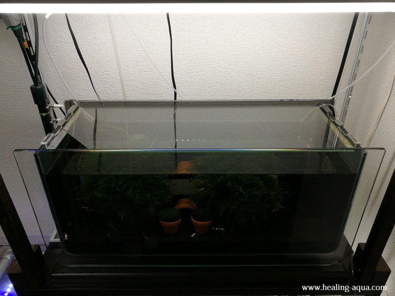 アーク500水槽隙間のないガラスフタ