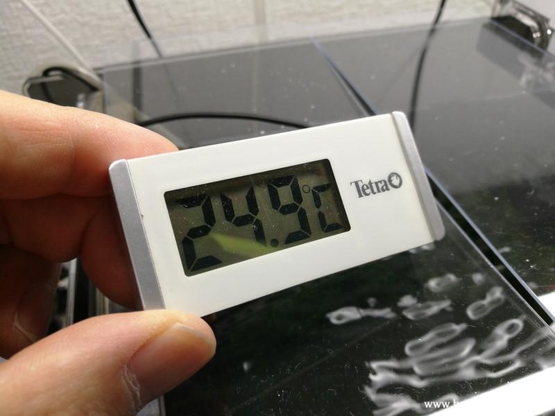 GEXアクアクールファン「レギュラー」使用後45分水温計24.9℃