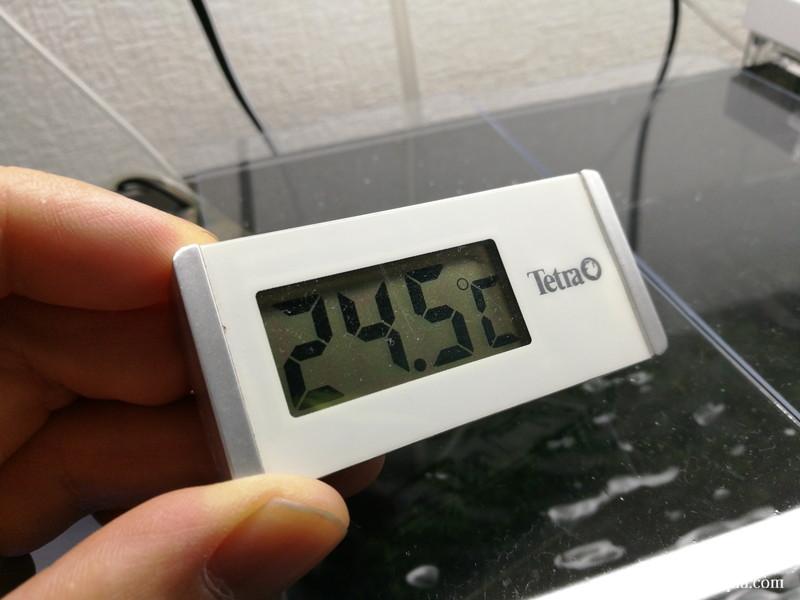 GEXアクアクールファン「レギュラー」使用後64分水温計24.5℃