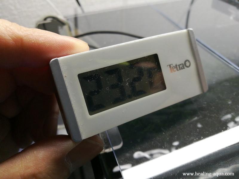 GEXアクアクールファン「レギュラー」使用後484分水温計23.2℃