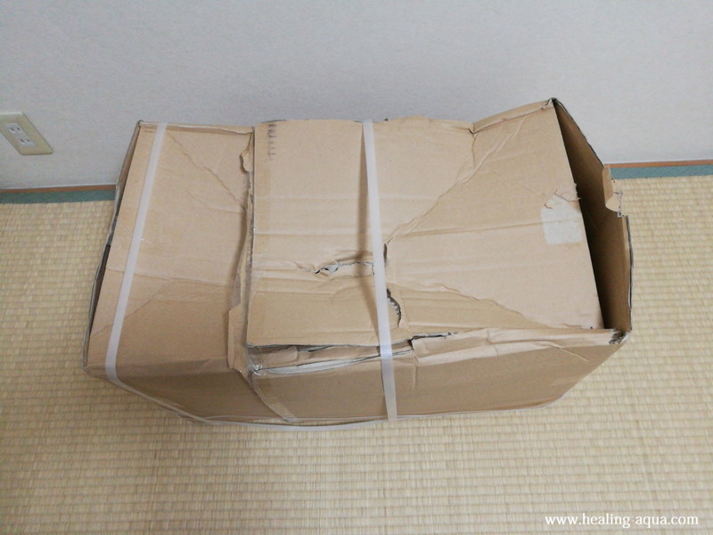 ゼンスイなごみ池M30L到着した箱の破損
