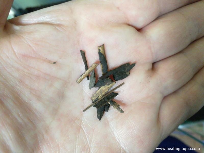 アマゾニアソイルから出た木のくず