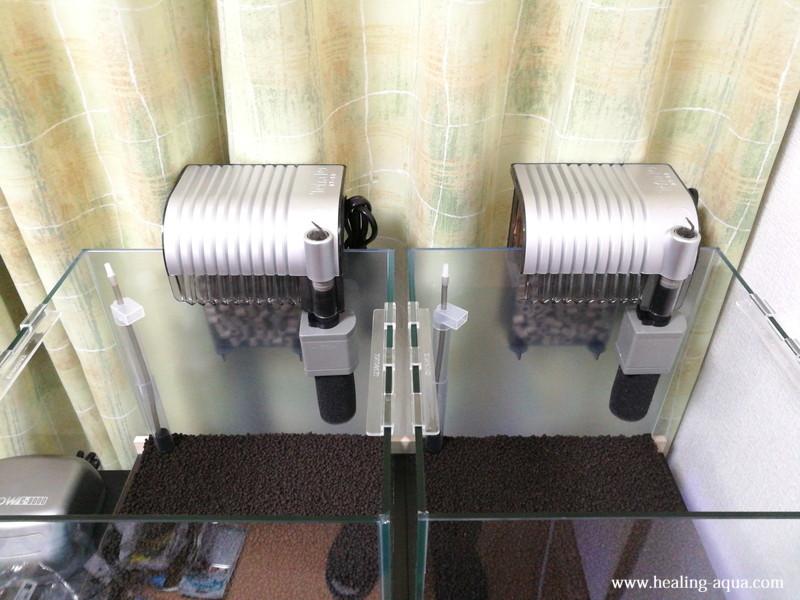 外掛け式フィルターAT-50を30cmキューブ水槽へ設置