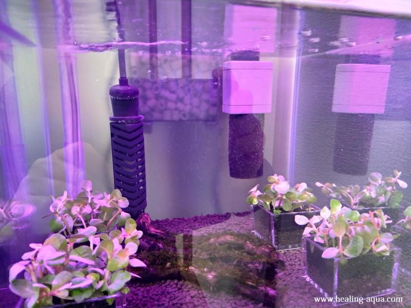 コトブキ工芸フラット(FLAT)LED300Blue・Redモード